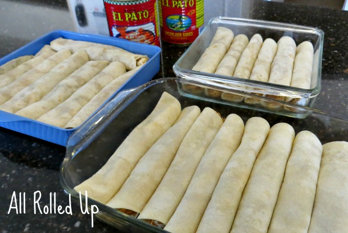 all rolled up chicken enchiladas