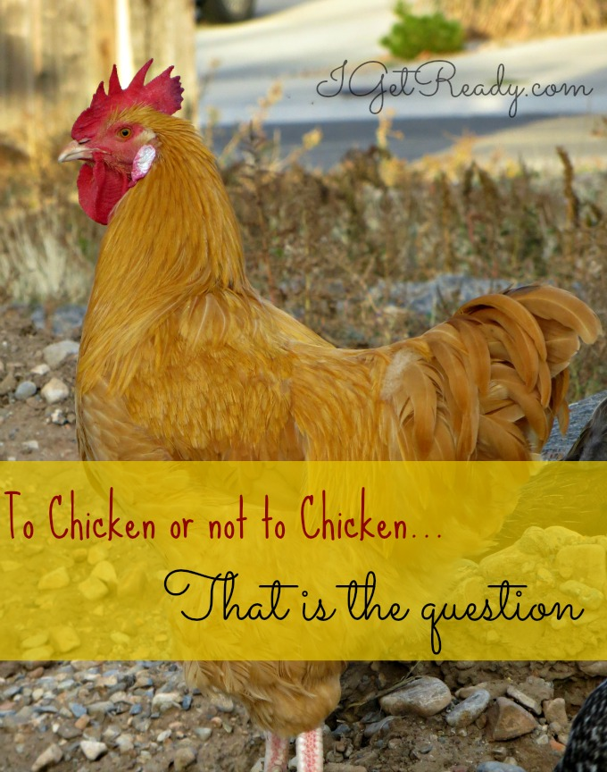 to chicken or not to chicken